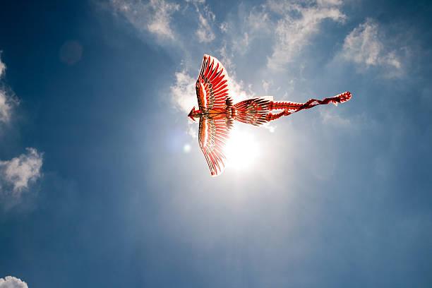 Flying el Firebird - foto de stock