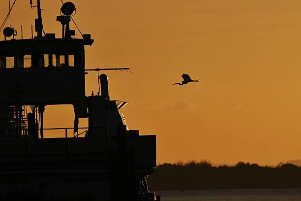 Flying einem Boot – Foto