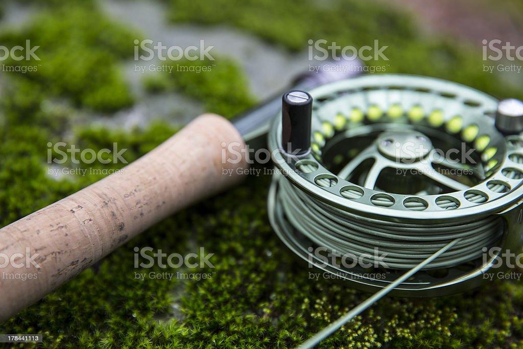 flyrod on moss stock photo