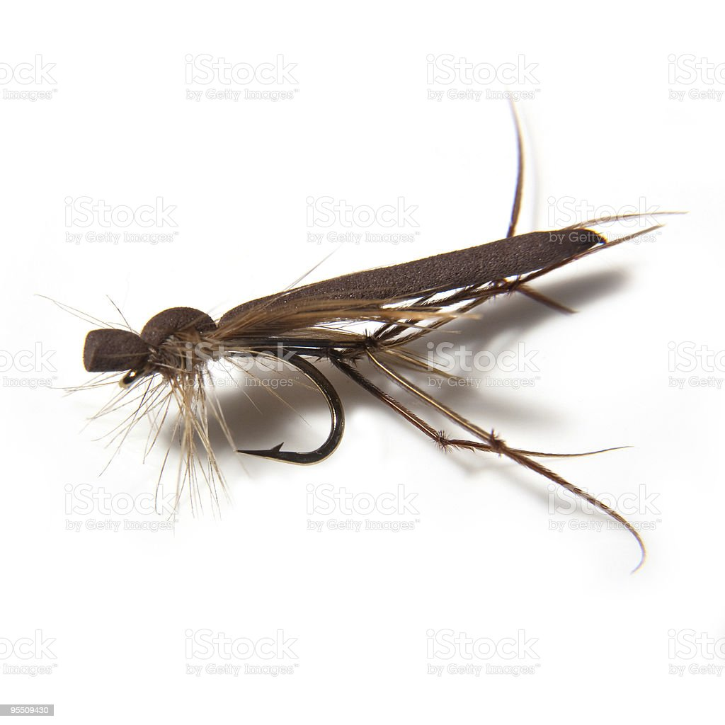 Foam Crane Fly Floating Trout Lure Stock Photo & More