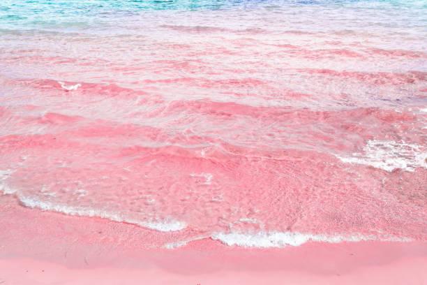 schaumige gekräuselt klar meer welle rollt, rosa sand shore türkis blaues wasser. schöne ruhige idyllische landschaft. tropical beach entspannung urlaubsparadies. textfreiraum elegant gestylt getönten bild - roll tide stock-fotos und bilder