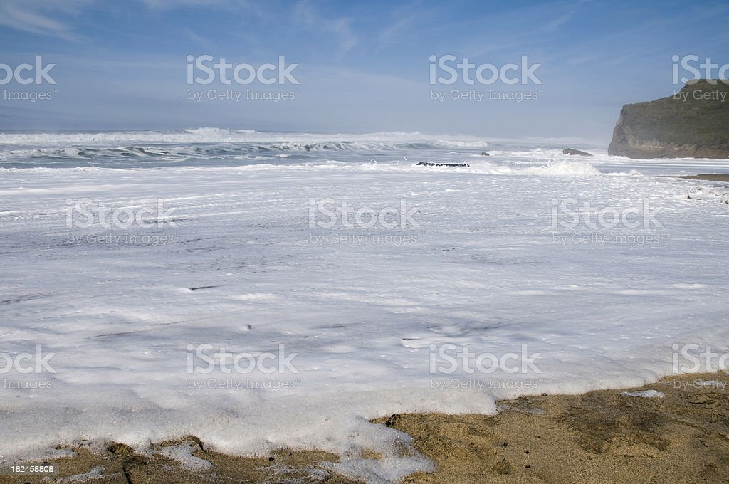 Foamy Surf on the Beach royalty-free stock photo