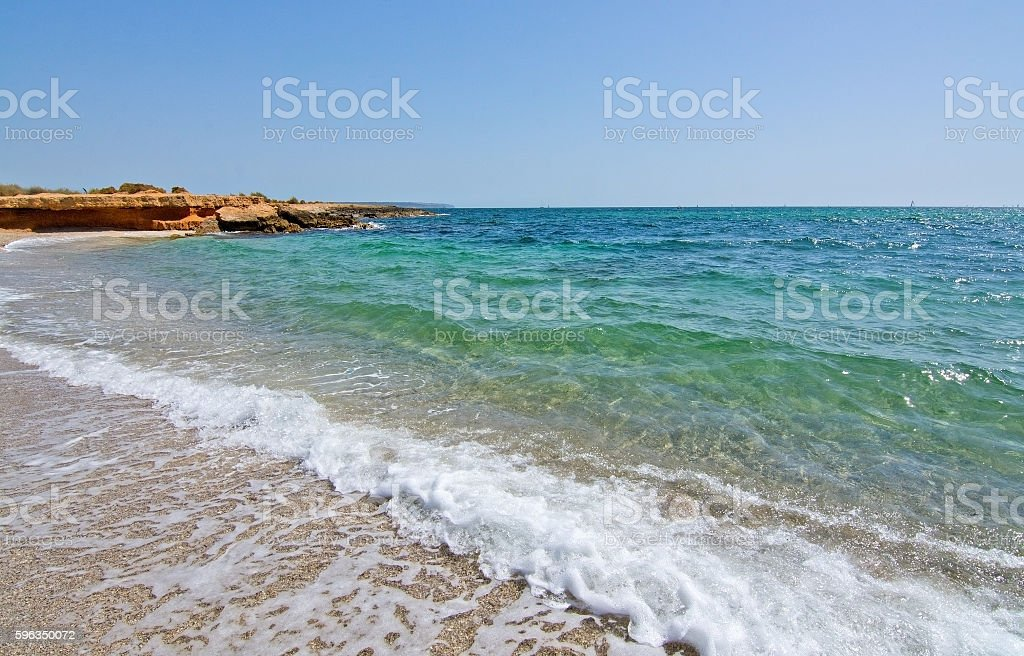 Foamy wave hits rocks and seashells beach royalty-free stock photo