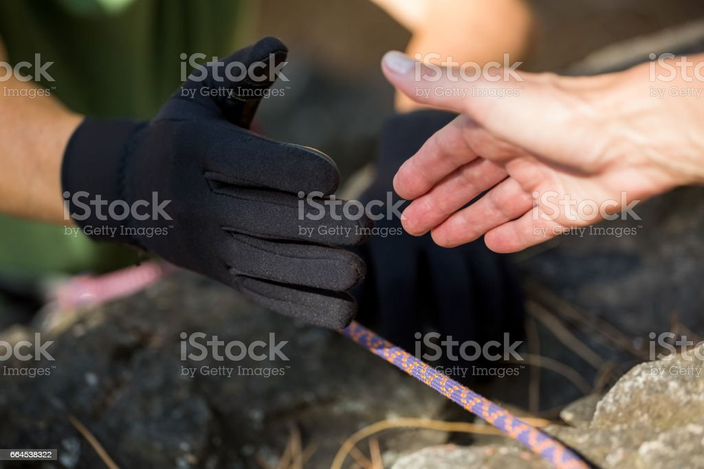 focus on hands royalty-free stock photo