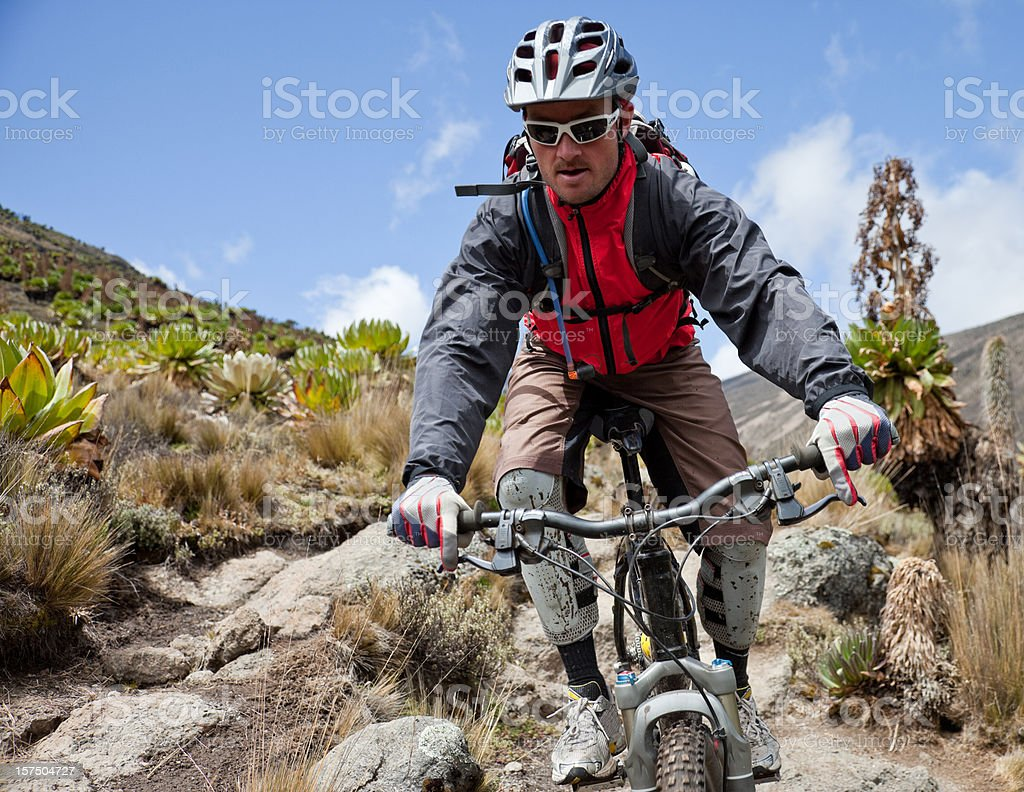 Focus on the downhill royalty-free stock photo