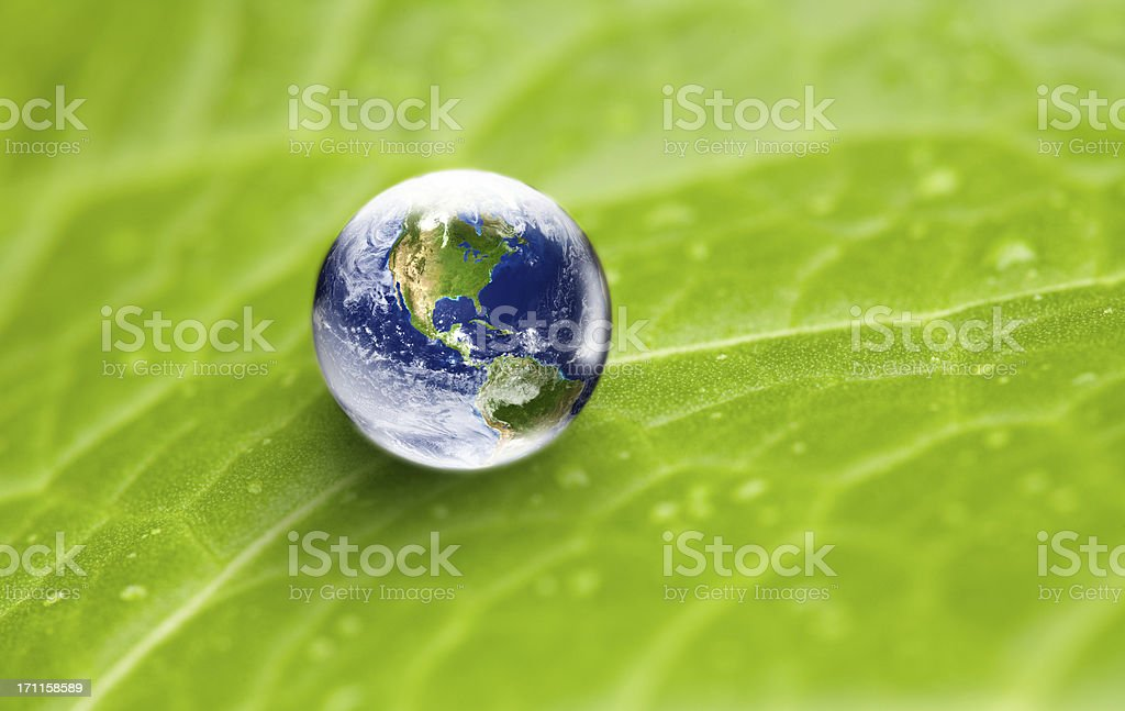 US focus world globe in water drop on green leaf stock photo