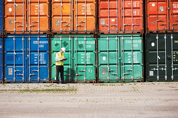 Focused on ensuring customs legislations are met! A customs inspector standing and reviewing a tack of containers customs official stock pictures, royalty-free photos & images