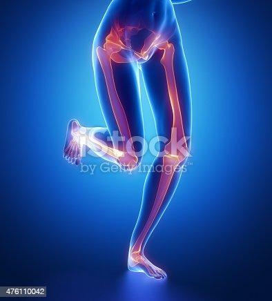 istock Focused on leg bones anatomy 476110042