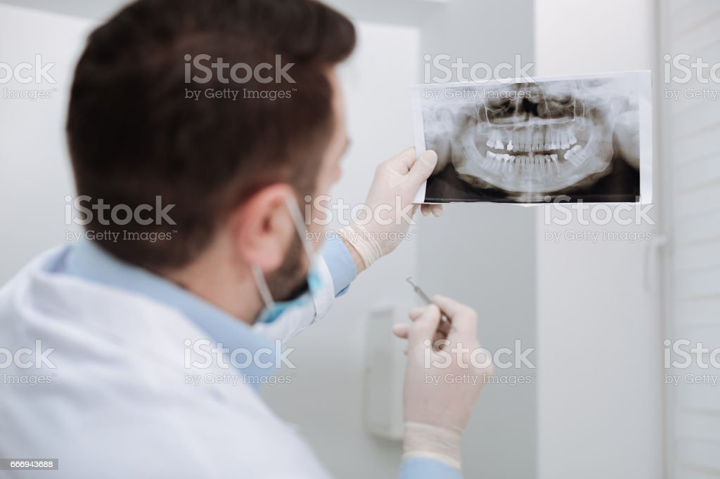 Focused professional dentist studying patients xray stock photo