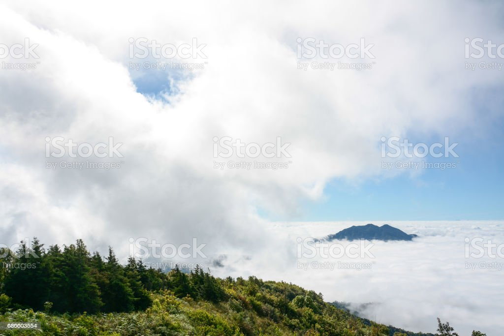 fog and cloud  on mountain at Kew Mae Pan ,Doi Inthanon National Park, Thailand. 免版稅 stock photo