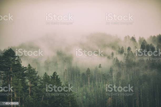 Photo of Fog and clouds on mountain