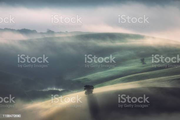 Photo of Fog and sunlight through misty trees in the valley of Tuscany, Italy