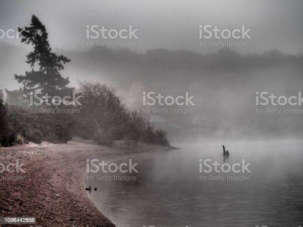 Fog at the edge of the loch ness with a strange silhouette on water picture id1096442856?b=1&k=6&m=1096442856&s=612x612&h=jcemp 83aew7 1qjz964ydhn36z0qzlyq9kfqg4oi s=
