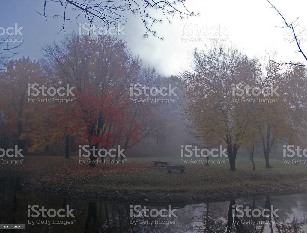 Fog autumn royalty-free stock photo