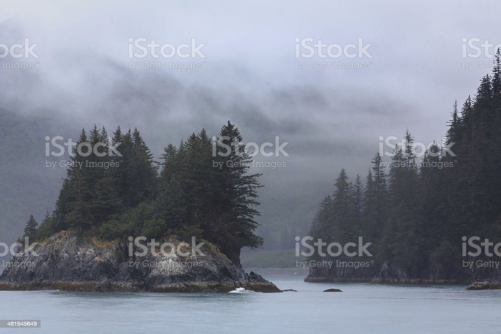 Fog clears around island of pine trees in Alaska stock photo