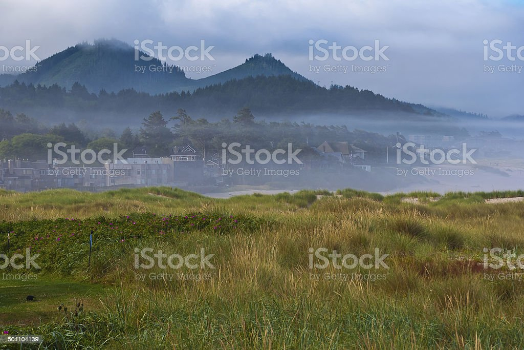 Fog comes in on little cats feet stock photo