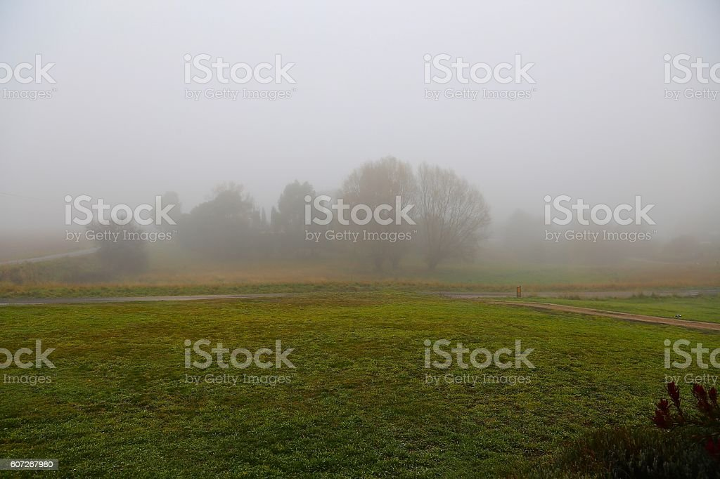 Fog covered Country Scene stock photo