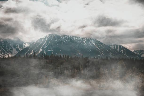 Fog covered landscape in the Denali National Park stock photo