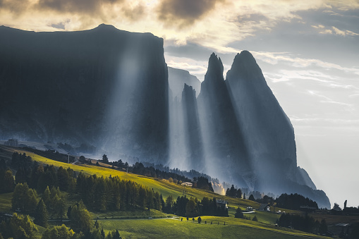 Nature landscape at sunrise on a misty morning in the green grass hills with sun lights, fog and sunbeams through pine trees and cabins in Alpe di Siusi or Seiser Alm area at beautiful sunset, Dolomites mountain, Italia