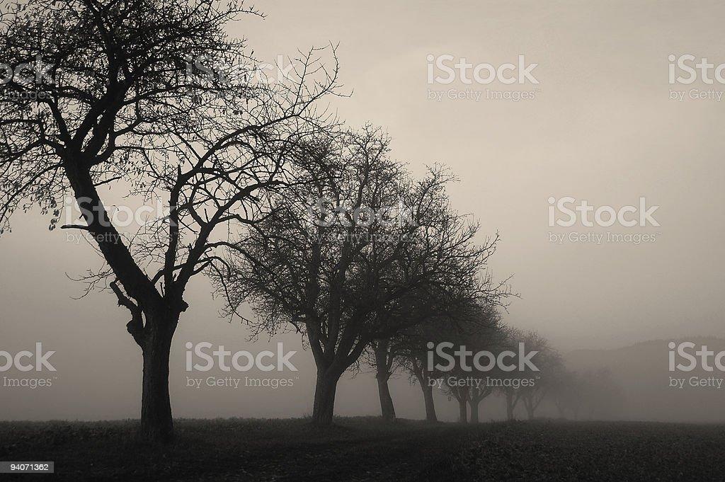 Fog in Duplex royalty-free stock photo