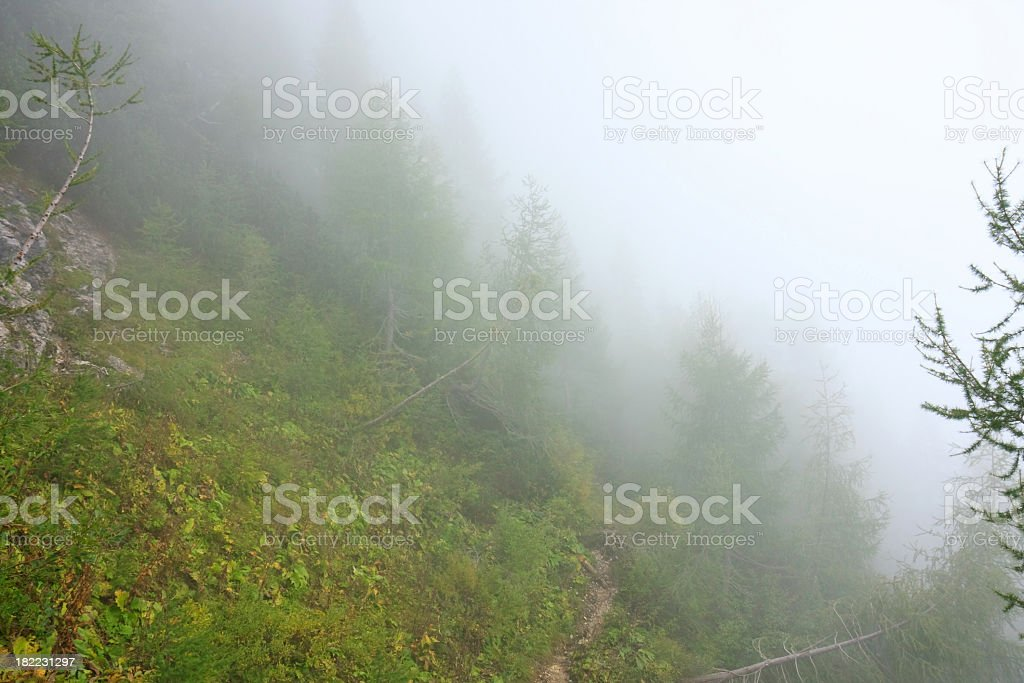 Fog in mountains royalty-free stock photo
