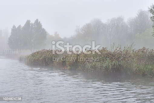 istock Fog in the autumn over the lake. 1024824238