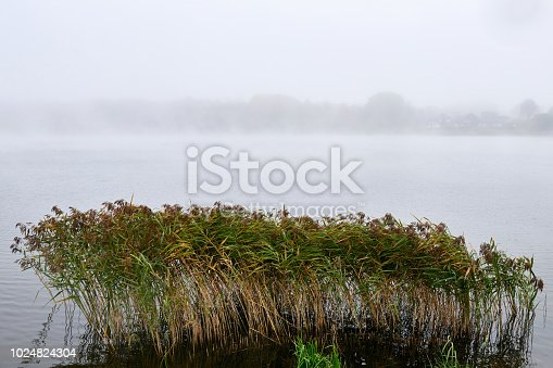istock Fog in the autumn over the lake. 1024824304
