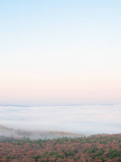 Fog in the Forest from Mount Wachusett in Princeton Massachusetts stock photo