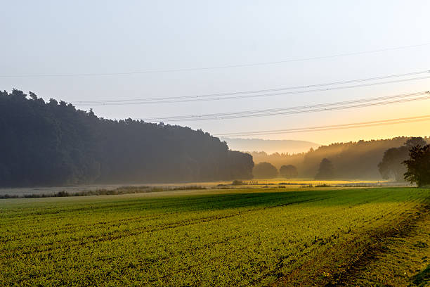 Fog in the morning Fog in the morning erlangen stock pictures, royalty-free photos & images