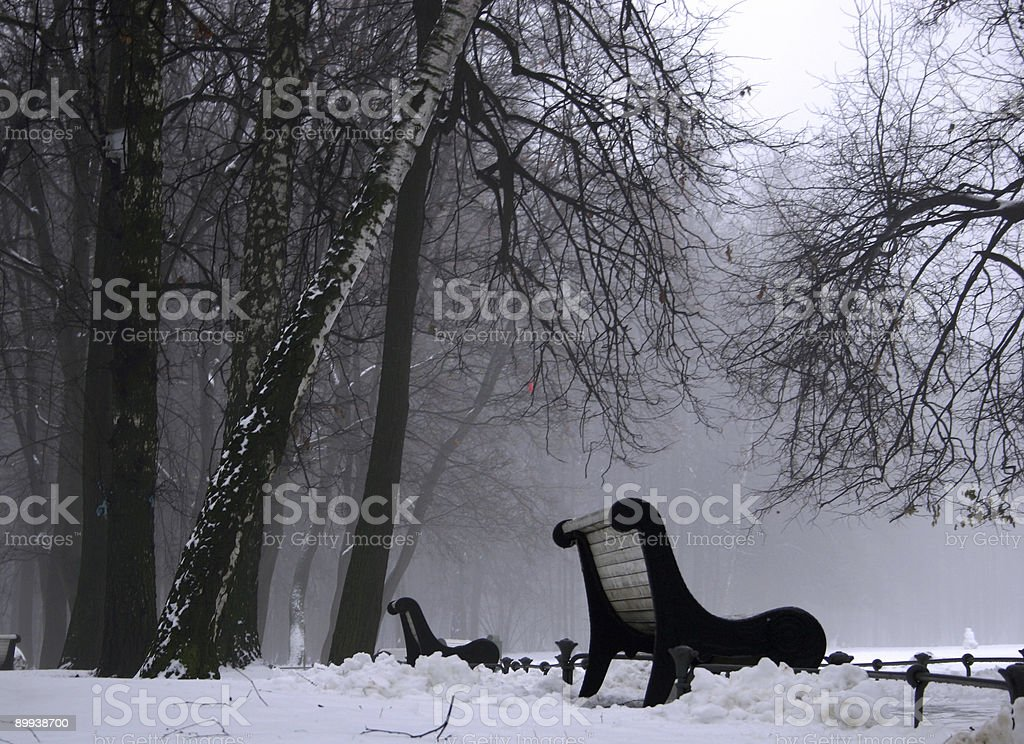 Fog in the park. royalty-free stock photo