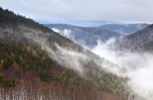 fog in winter Harz mountains