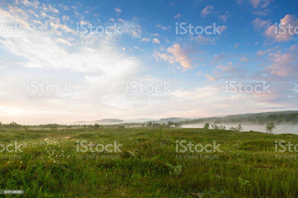 Fog landscape stock photo