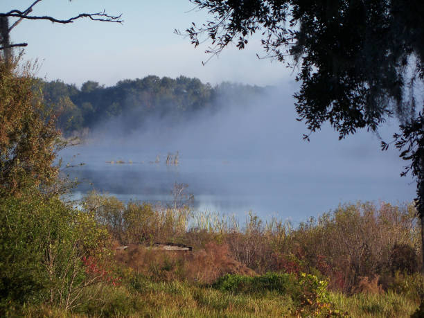 Fog lifts from a small lake stock photo