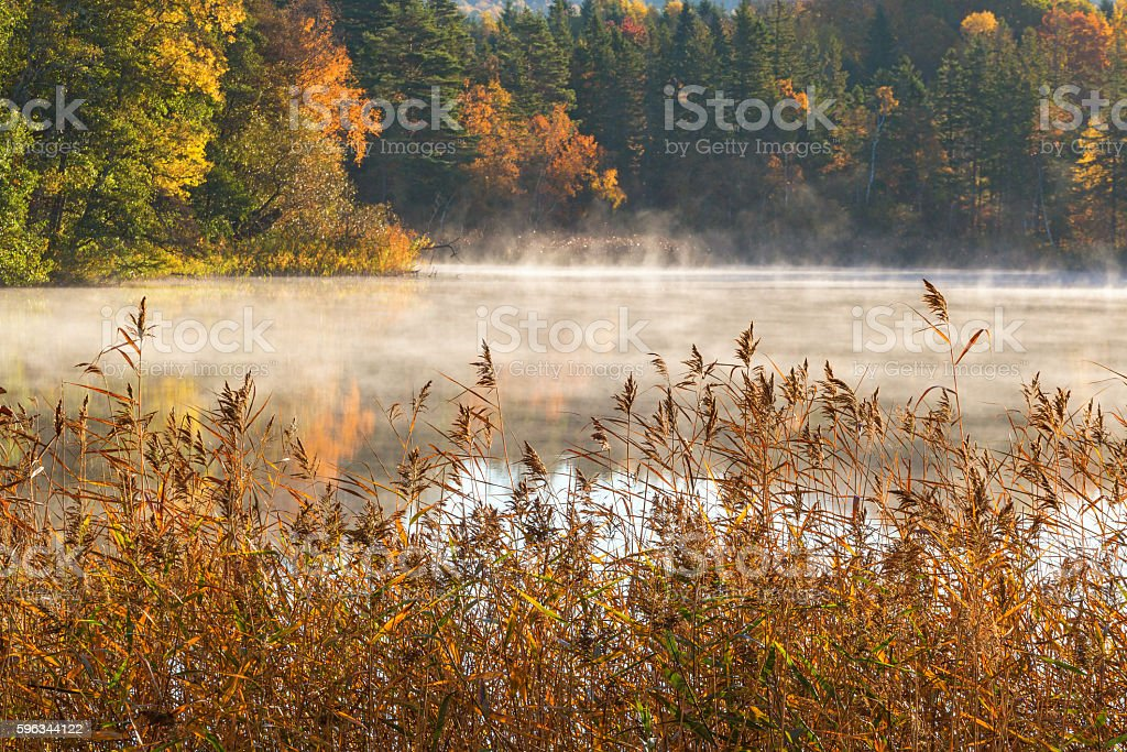 Fog on the lake in the autumn landscape royalty-free stock photo