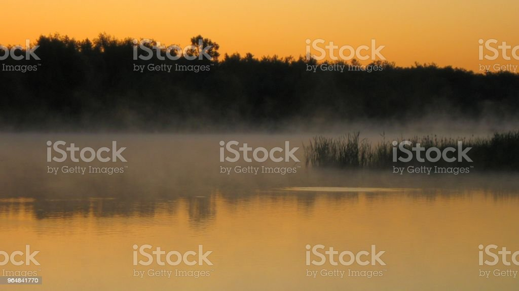 Fog on the lake royalty-free stock photo