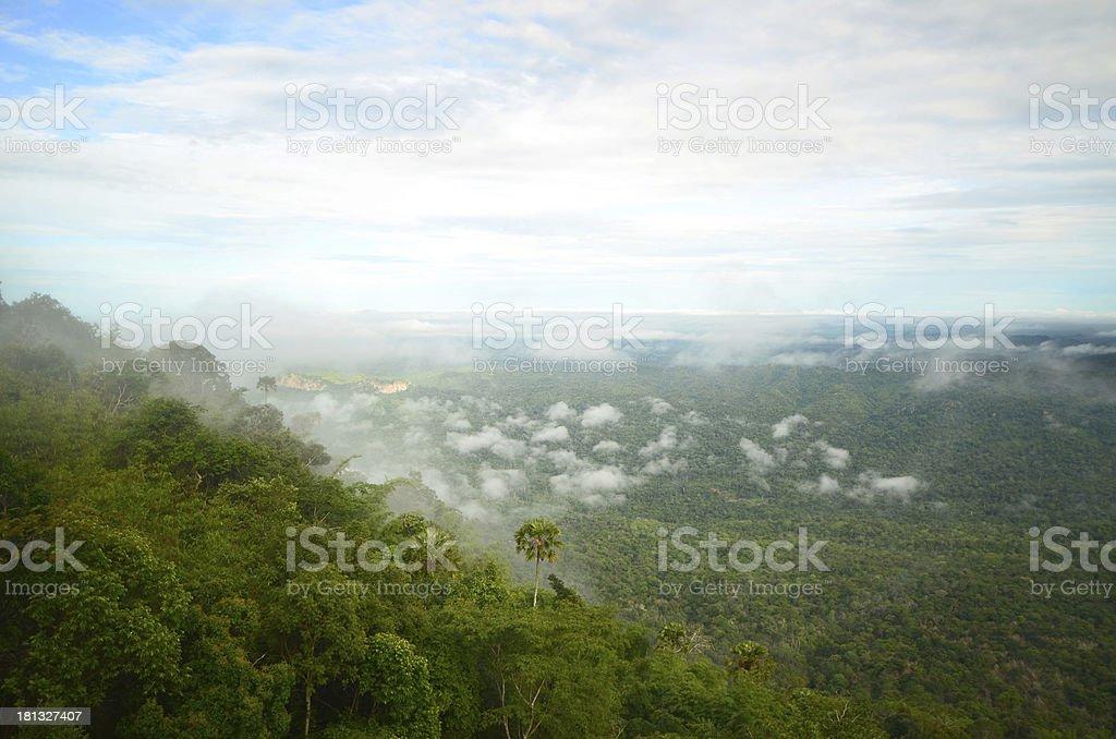 Fog on the mountains royalty-free stock photo