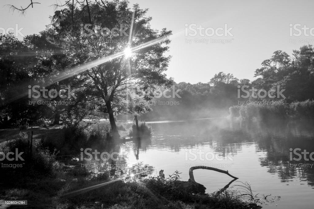 Fog Over a Lake stock photo