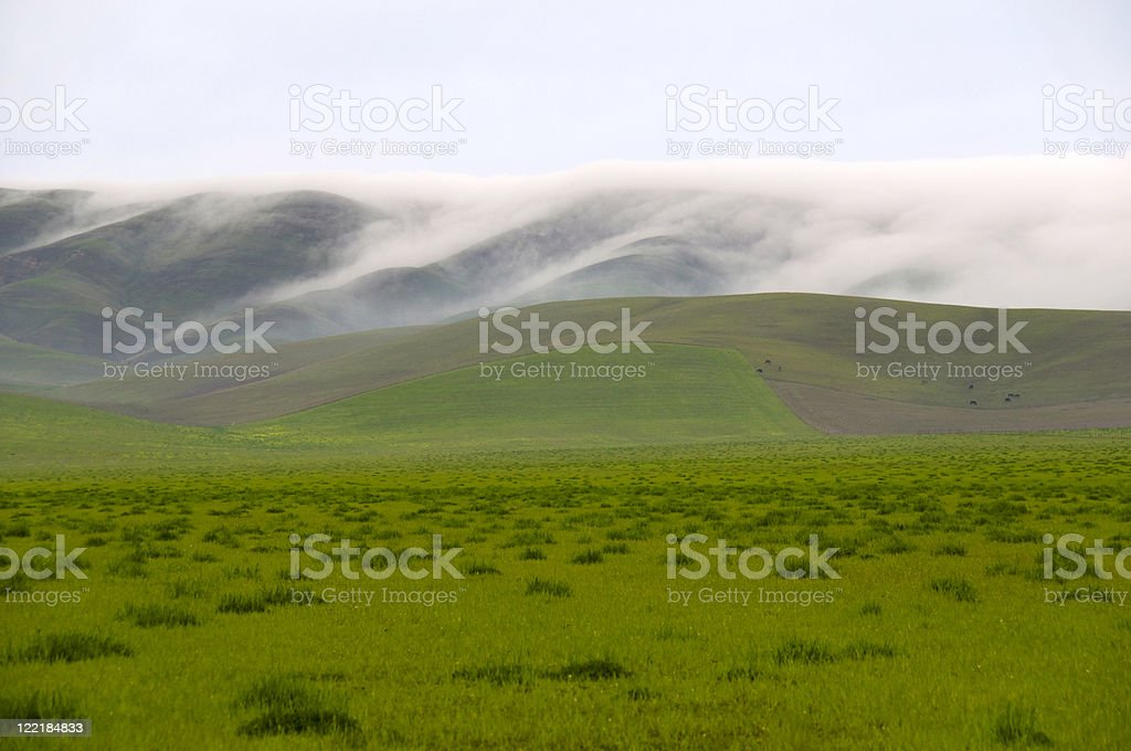 Fog Over the Hills stock photo