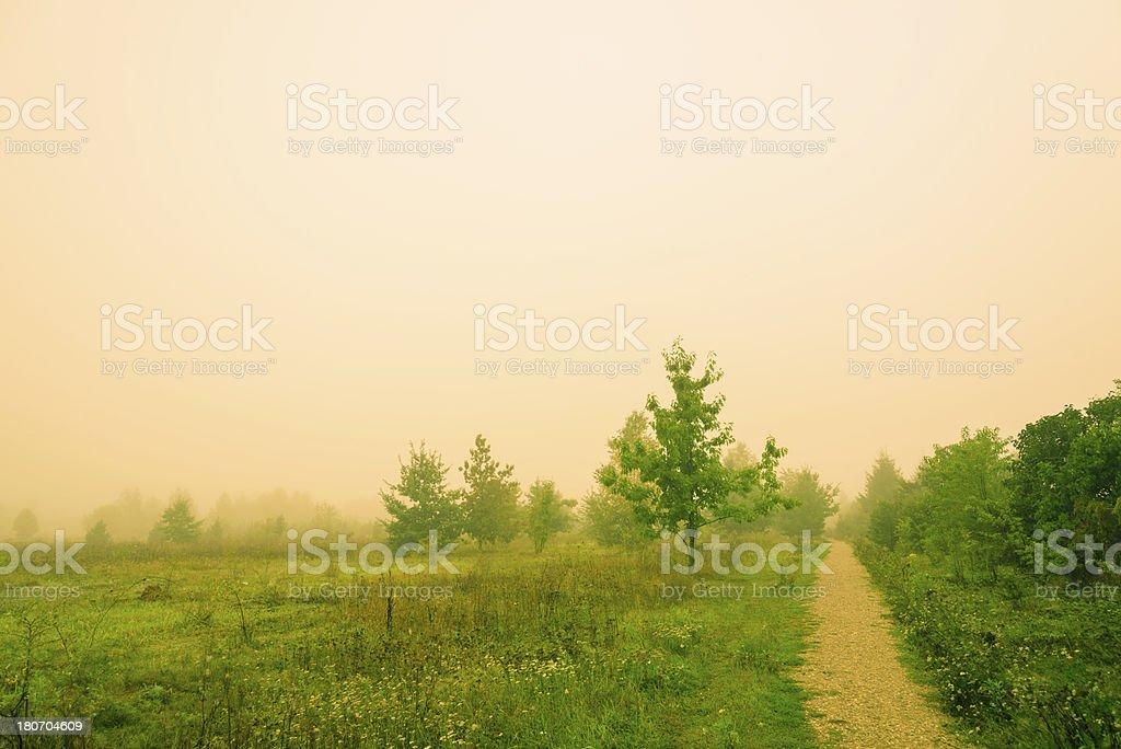 Fog Over the Lea royalty-free stock photo