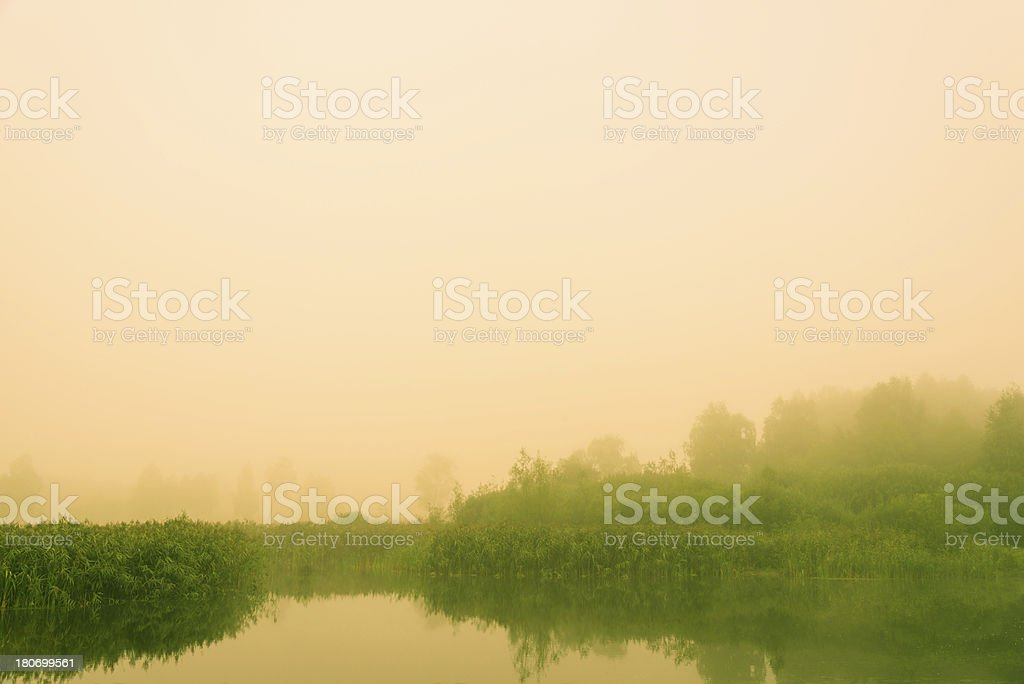 Fog Over the Pond royalty-free stock photo
