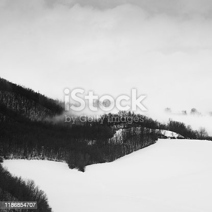 477312602istockphoto Fog over trees in a snow field, Parma, Italy 1186854707
