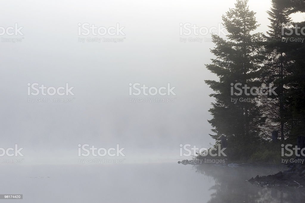 Fog royalty-free stock photo