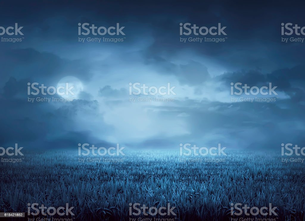 Fog surrounds meadow at night stock photo