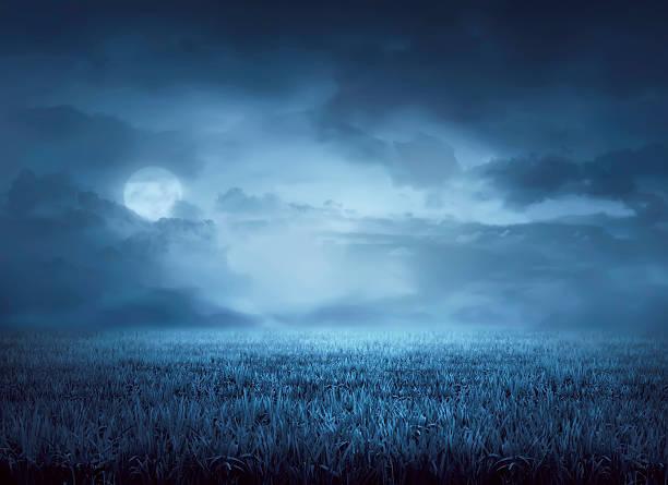 Fog surrounds meadow at night - foto de stock