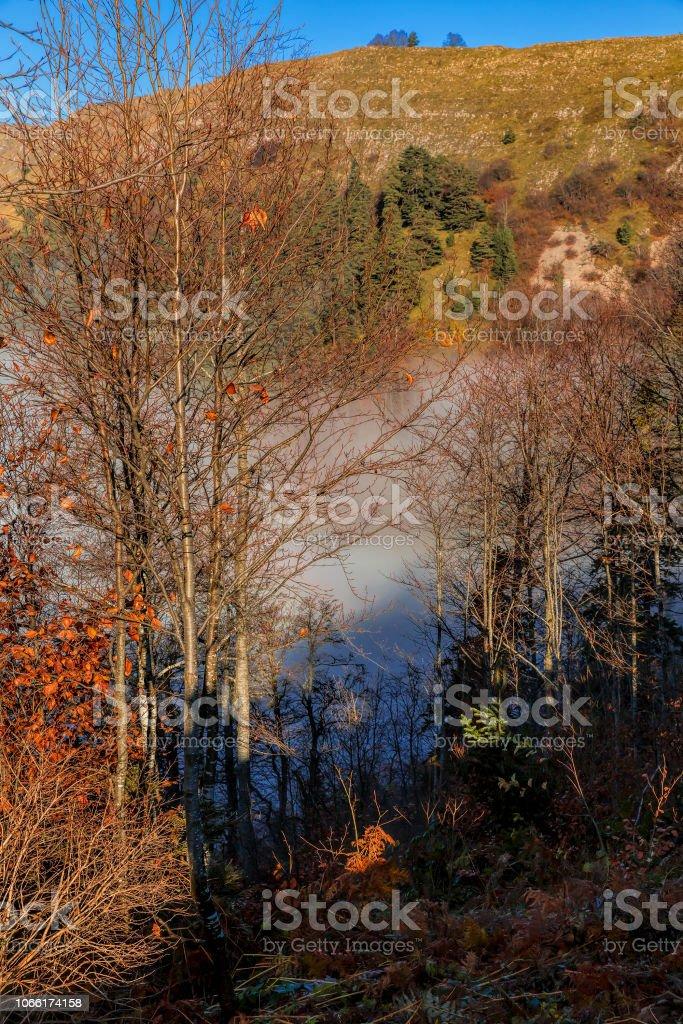 Sis, ağaçlar ve yedi göller Türkiye'de sonbahar stok fotoğrafı