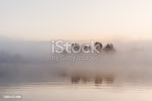 Fog winter landscape at lake with tree