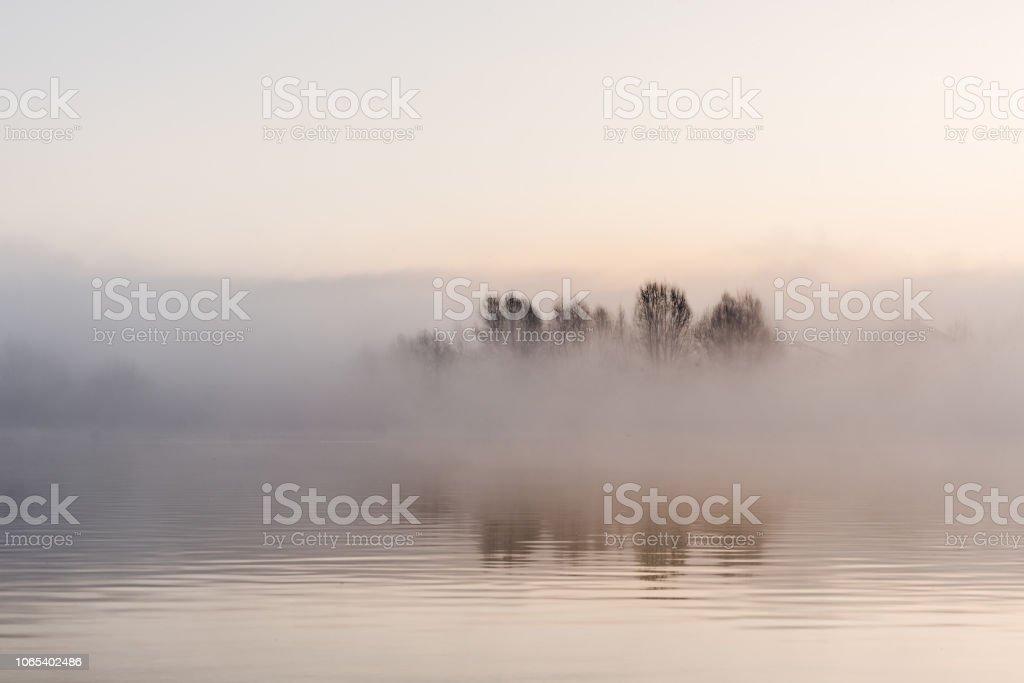 Nebel-Winterlandschaft am See mit Baum – Foto