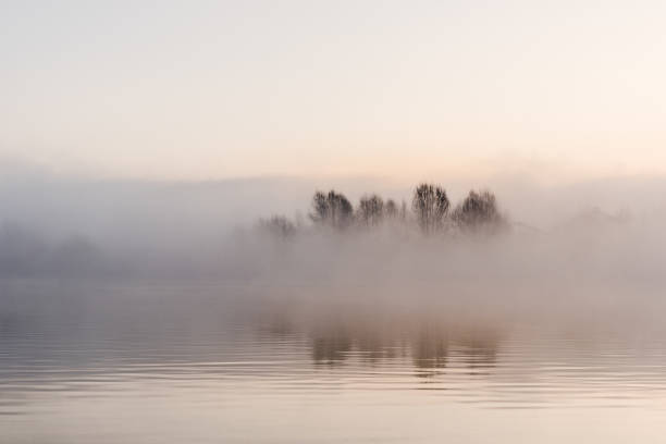 Fog winter landscape at lake with tree Fog winter landscape at lake with tree trees in mist stock pictures, royalty-free photos & images