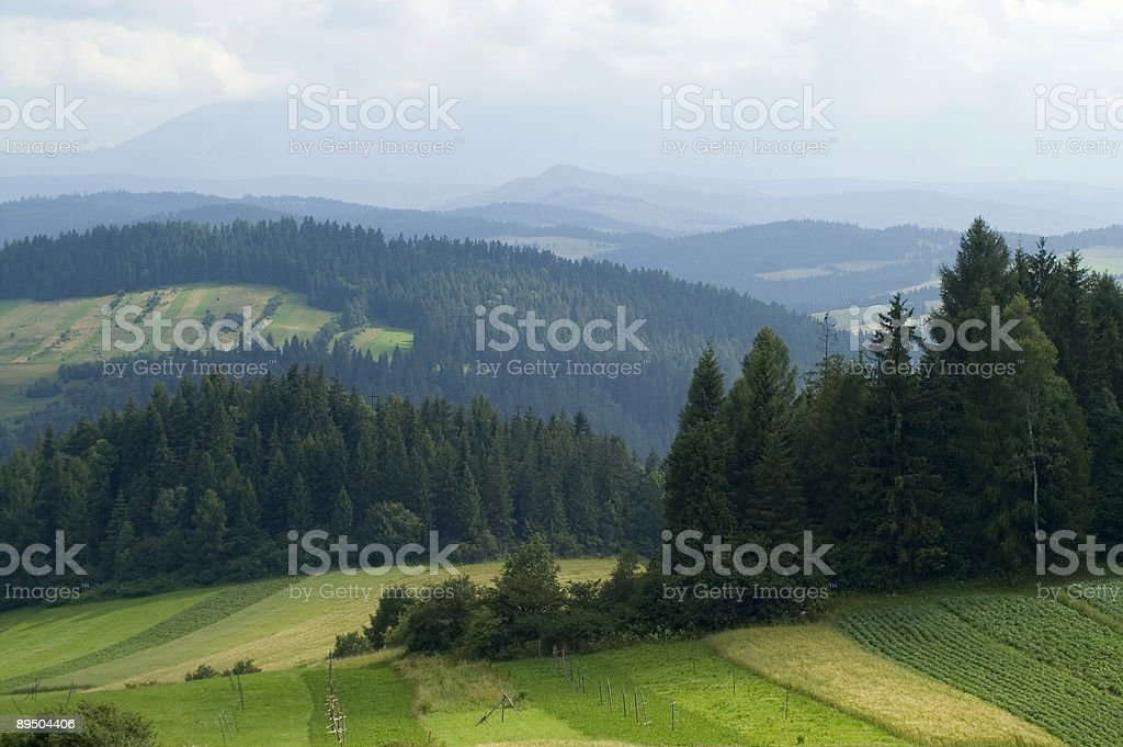 Fogg in mountain royalty free stockfoto