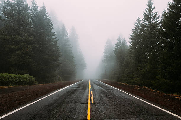 fogged in - vanishing point stock pictures, royalty-free photos & images